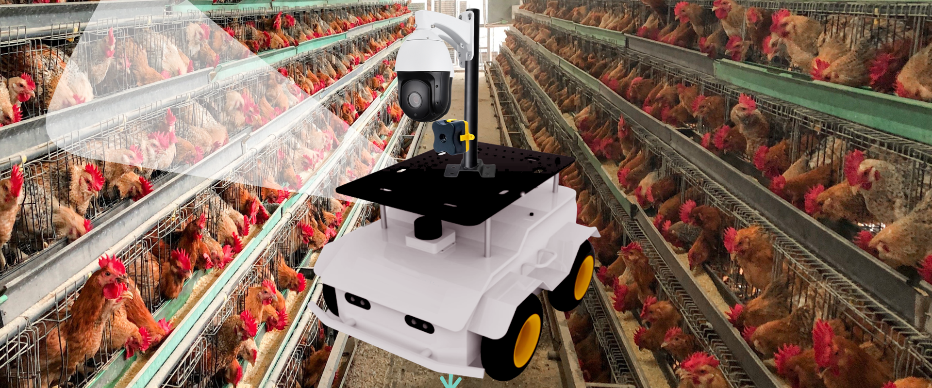 Robotics For Manufacturing and Agriculture